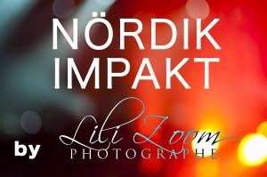 Nordik-Impakt-2013-0